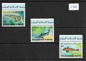 SMT, MAURITANIA,1979, a very rare fishes set, luxury MNH, € 300++++