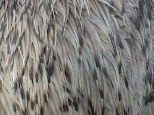 50 EMU FEATHERS-Various Lengths- Wedding, Jewelry, Fly Tying, Costumes