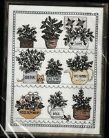 "Janlynn Counted Cross Stitch Kit Herbal Window #50-546 12"" x 16"" 1989"