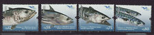 Portugal 2016 MNH - Fish of the Mediterranean - Joint Issues  - set of 4 stamps