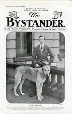 IRISH WOLFHOUND ANTIQUE DOG PRINT  Viscount Powerscourt Cover The Bystander 1906