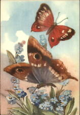 Chiostri Butterfly #169 Postcard