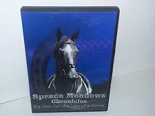 Big Ben Ian Miller Equestrian Show Jumping Spruce Meadows Calgary (DVD, Region 1