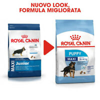ROYAL CANIN DOG MAXI PUPPY (EX JUNIOR) 4 KG
