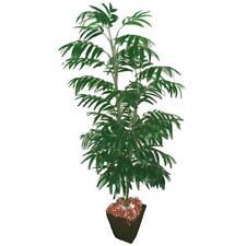 5 ft (approx. 1.52 m) artificial Palmera Phoenix - 612 Hojas-Tropical Planta Ornamental
