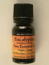 Ancient Wisdom Aromatherapy Essential Oils 10ml Eucalyptus