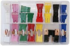 PAL Fuses MALE-FEMALE Assorted Box Mixed (20--100 amp) QTY 30 AT126