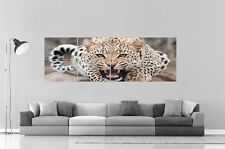 Leopard Panorama  Wall Art Poster Grand format 168cm X 59,4CM Large Print