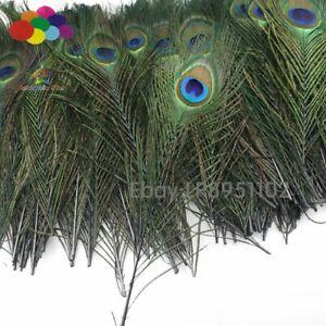 Top quality peacock feathers 100 Pcs/lot length 25-32 CM beautiful natural Diy