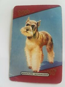 Playing Card / Swap Card - Coles - named  MINATURE SCHNAUZER - Vintage