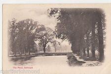 The Pond, Norwood London Postcard, B517