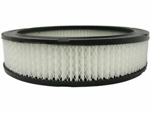 AC Delco Professional Air Filter fits Oldsmobile Delmont 88 1967-1968 19KDPP