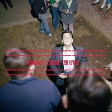 Elvis Presley at Graceland 1960 8x10 Photo Greeting his fans at the Gates