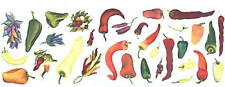 Chili Pepper Wall Decor Wall Art Transfers Decal Tatouage