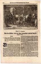 Kühe-Kalb-Kälber-Kuh-Landwirtschaft-Bauer-Landwirt Kupferstich 1700