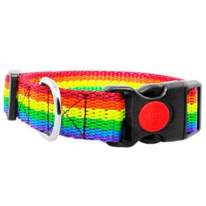 Collare per Cane Collare Nylon Cani Gurthalsband Con Fusibile Arcobaleno