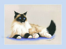 Ragdoll Cat Print Proud by Irina Garmashova