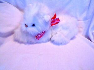 Plush Valentine White Kitten with a red bow