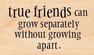 New Penny Black TRUE FRIENDS Wood Rubber Stamp Verse Sentiment Bond Love Sisters