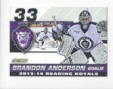 2013-14 Reading Royals (ECHL) Brandon Anderson (goalie)