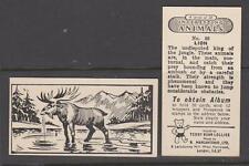 TRADE CARDS Marcantonio 1953 Interesting Animals - complete set