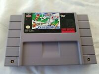 Bugs Bunny in Rabbit Rampage Super Nintendo SNES Game *Authentic* Tested Working