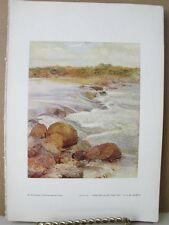 Vintage Print,FALLS OF FAY,Water Colour Society,1804-1904