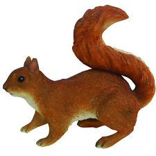 DISCONTINUED Red Squirrel Small Vivid Arts-XRL-RSQU-D