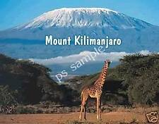 MOUNT KILIMANJARO - day - Travel Souvenir Refrig Magnet