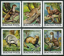 Hungary 2611-2616,MNH.Wildlife Protection.Otter,Wild cat,Pine marten,Badger,1979
