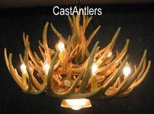 Whitetail 21 Antler Chandelier W/Downlight  12-Lights 32X20 Made in USA