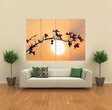 LEAVES BRANCH SUN RED  NEW GIANT POSTER WALL ART PRINT PICTURE G1183