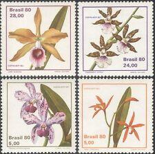 BRASILE 1980 Orchidee/Fiori/Piante/NATURA/stampex/Orchidea 4 V Set (n43522)