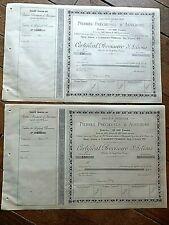 ACTIONS PIERRES PRECIEUSES D'AUVERGNE 1899 - 2 pièces
