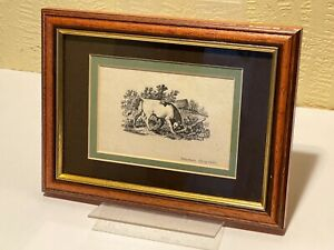 Thomas Bewick OX in Farm Landscape Framed Wood Engraving Print