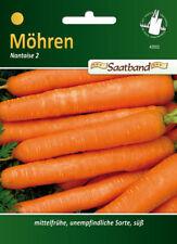 Large Carrot Flakkee 15000 Seeds Organic Vegetable