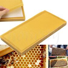 10 Sheets Natural Beeswax Candlemaking Bee Wax Honeycomb Beekeeping 195*415mm