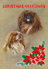 PEKINGESE SINGLE DOG PRINT GREETING CHRISTMAS CARD