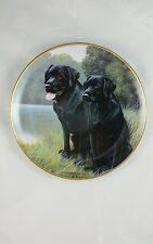 "Franklin Mint #C9951 ""Sporting Companions"" Limited Edition Collector Plate Dogs"