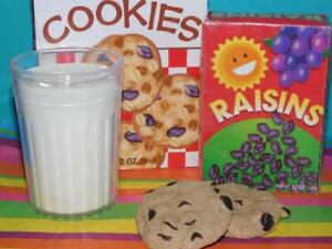 Melissa and Doug Oatmeal Cookies Raisins Glass of Milk FAUX Realistic Play Food
