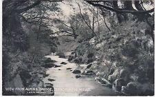 View From Alpine Bridge, LLANDRINDOD WELLS, Radnorshire - Railway Official