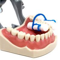 10Pcs Dental disposable cotton roll holder clip accessories JE