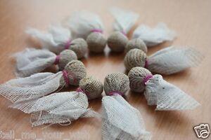 10x Enhancing Herbs For heals Good Healthy Betta Fighting Fish Popeye Treatment