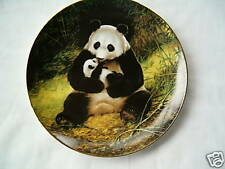 """The Panda"" Collector plate"