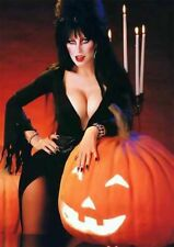 Vintage Elvira Halloween Photo 730 Oddleys Strange & Bizarre