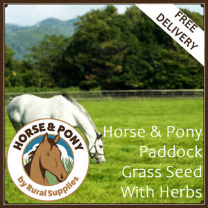 Horse Pasture Herbal Grass BUNDLE - 1 ACRE GRAZING SEED MIX FOR HORSE PADDOCKS