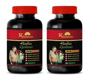 Weight loss Fat burner - PURE HOODIA GORDONII - mood formula - 2 Bottles