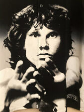 The Doors Jim Morrison Dragonfly Shirt Mens 2Xl 2002 Excellent! Rare!