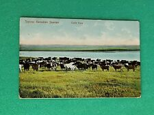 Typical Canadian Scenes - Cattle Farm Postcard by Post Card Co, Montreal #4308