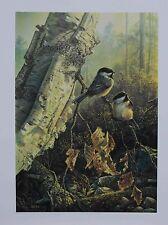 Denis MAYER Morning Charm Black-Capped Chickadees LTD art print SIGNED